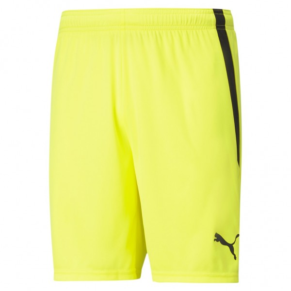 Puma teamLIGA Shorts