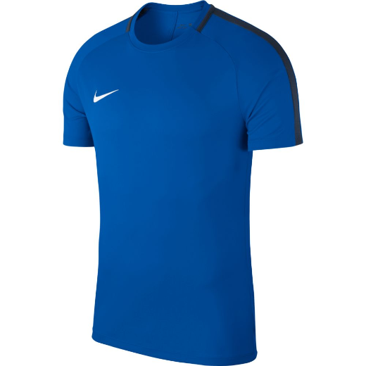 Nike Training Top Academy 18